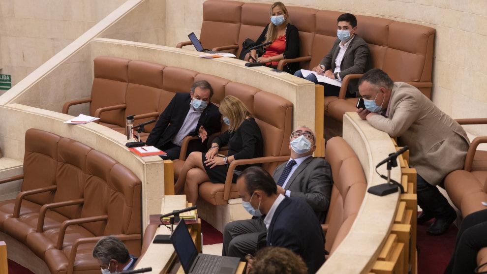 La 'Ley Celaá', el matadero de Barreda, el lobo y los centros de salud y de día, a debate este lunes en el Parlamento