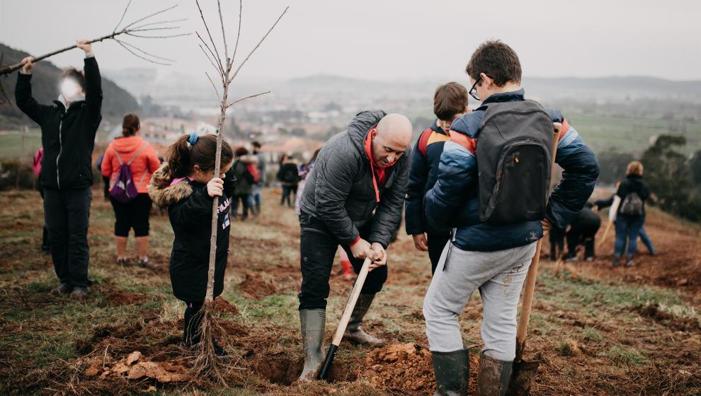 El Ayuntamiento plantará 300 nuevos cerezos junto al polígono Mies de Molladar