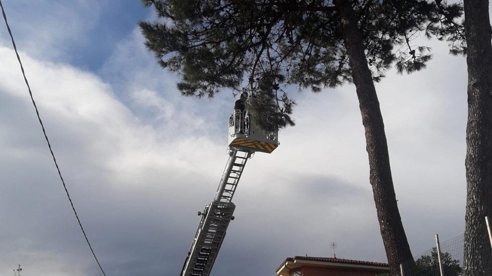 El viento provoca 87 incidencias en Cantabria, con caída de árboles, desperfectos en infraestructuras y daños en vehículos