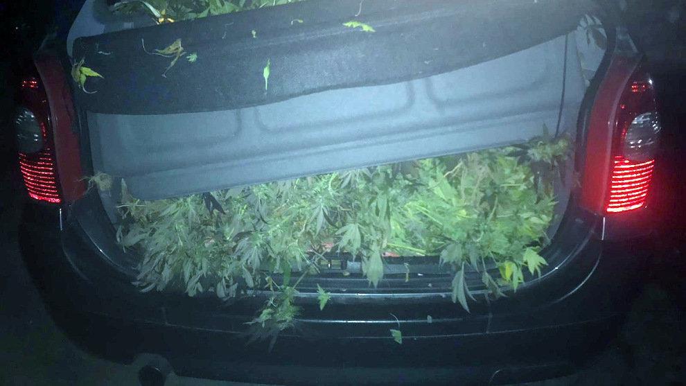 Imagen del maletero del coche | Guardia Civil