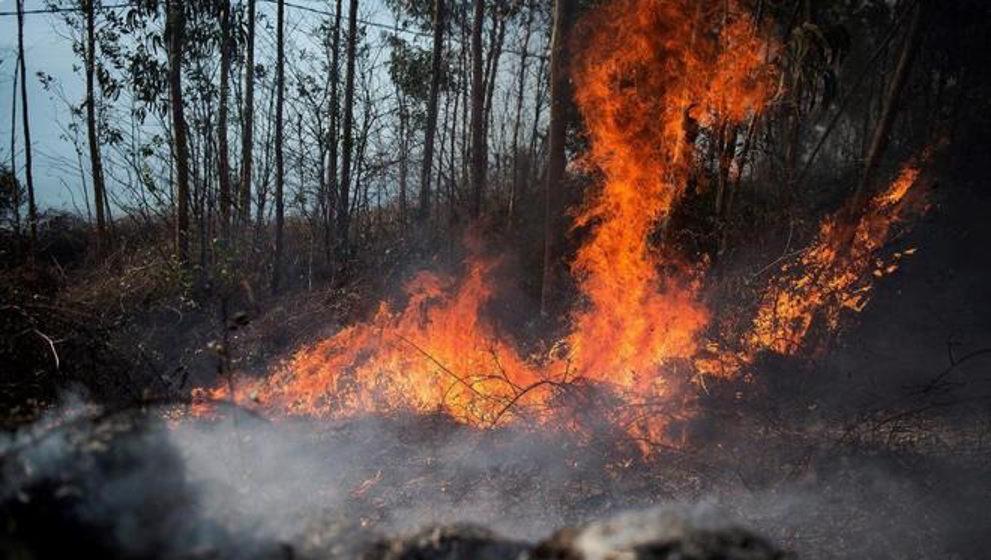 """Podemos culpa al Gobierno de la ola de incendios y considera a Revilla """"cómplice"""" de los mismos"""